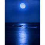 月との縁が深い町、静岡県東伊豆町とタイアップ!「十五夜お月見フェア開催」