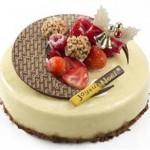 製菓専門学校の学生が考案!オリジナルクリスマスケーキが発売開始!