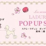 スクレ・ラデュレ POP UP SHOP GINZA MITSUKOSHI オープン!