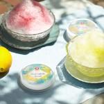 """冷蔵庫で和コスメ!『四季折々""""薄荷レモン""""』季節限定販売"""