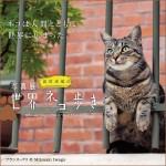 写真展 岩合光昭の世界ネコ歩き