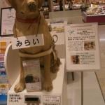 盲導犬ふれあいキャンペーン