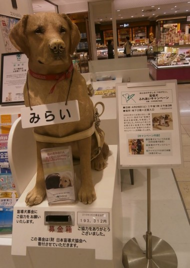 盲導犬募金箱