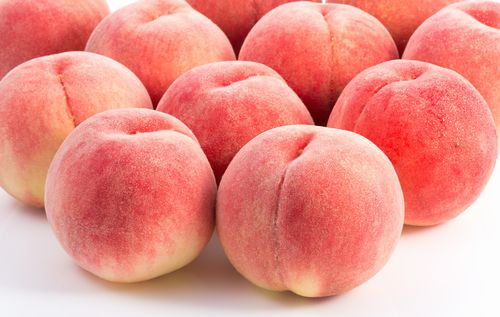Japan Peaches isolated on white background