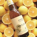 サンクトガーレン、泡からゲップにまで<br>オレンジ弾けるフルーツビール「湘南ゴールド」<br>4月14日より春夏限定販売。