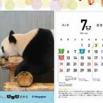 「パンダ記念日カレンダー入りクリアファイル」<br>プレゼントキャンペーン