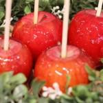 代官山本店で大行列ができるりんご飴専門店<br>『Candy apple』横浜に初出店!