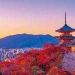 京急百貨店は10月1日(木)で開店24周年を迎えます<br>『上大岡大誕生祭』
