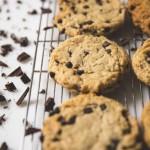 ヴィーガンアメリカンベイクovgo B.A.K.E.Rが<br>ラフォーレ原宿ポップアップ<br>『Holiday Cookie Party』を開催