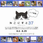 「ねこにすと37〜シブ猫篇〜」+<br>いぬ写真パネル展「いぬにすと〜シブ犬篇〜」