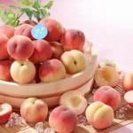旬の「もも」をまるごとどうぞ!<br>フルーツパラダイス『もも食べ放題』